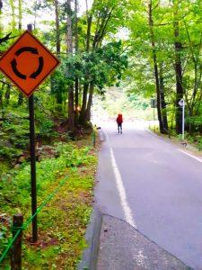 森の中の一本道をゆくバックパッカーが一人。手前にラウンドアバウト交差点の標識